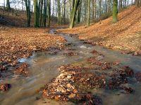 Schmelzwasser- Delta