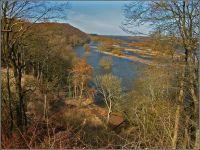 Frühjahrshochwasser  an der Elbe