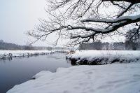 Winterliche Flußlandschaft